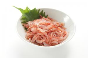 【4月素材編】春山菜/真鯛/桜エビ